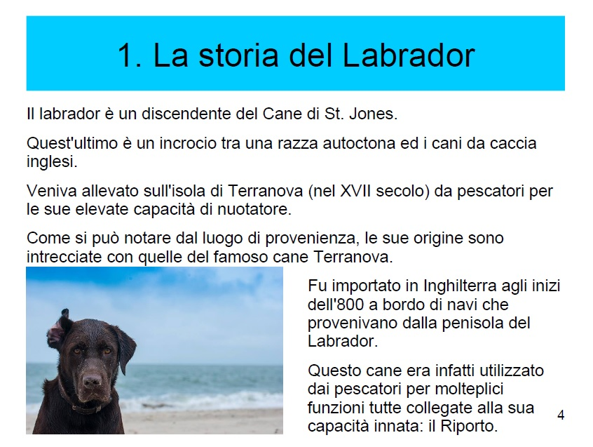 labrador ebook 2